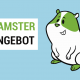 Hamster Angebot